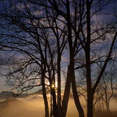 Le brouillard monte par Tigrouleader74