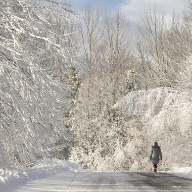 Promenade hivernale par nortaillon