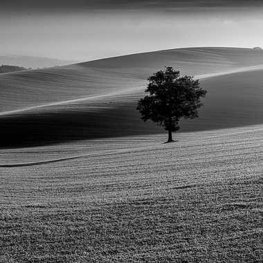 Solitude agricole par Patrick32
