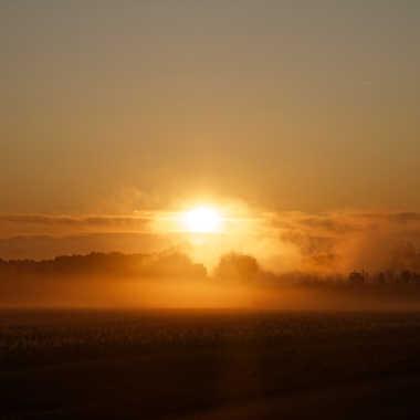 Brume matinale par Jerome Rabille