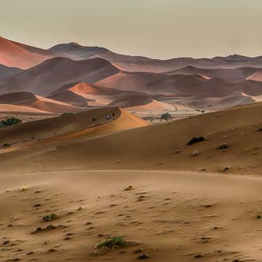 Dunes de Sossusvlei par Jeananne