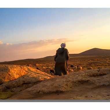 Au pays des sables par saharadz
