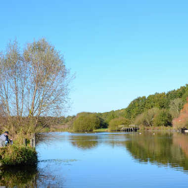 Pêche dans le matin calme par clero