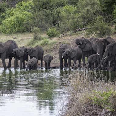 Famille au point d'eau de Swensi par patrick69220