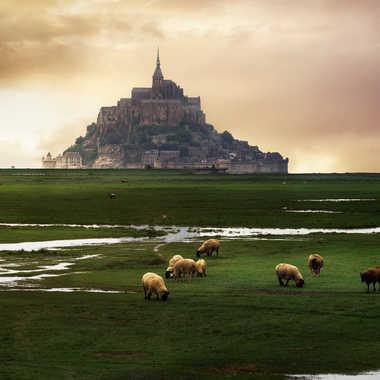 Mont st Michel par jeremy_2042