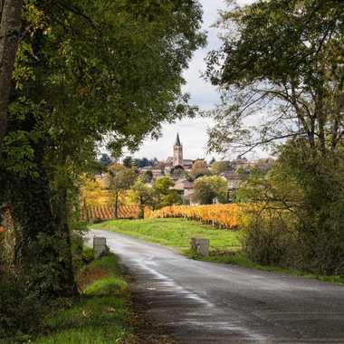 Lancié, village en Beaujolais par patrick69220