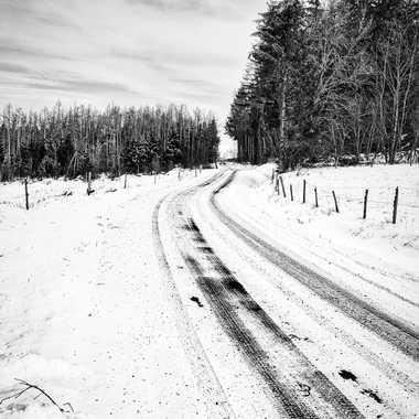 Qui foule la neige, ne peut cacher son passage... par FloRd