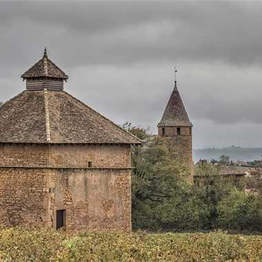 L'automne en Beaujolais par patrick69220