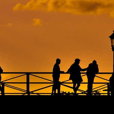 Sur le pont des Arts par dauphin35