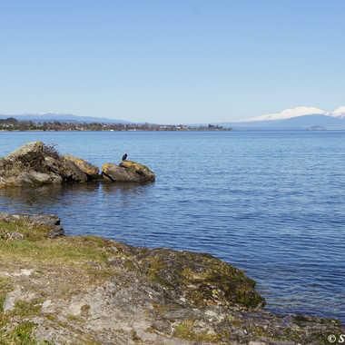 Lake Taupo par sand.george