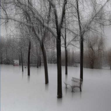 En attendant le printemps par Lolo Zikgyver