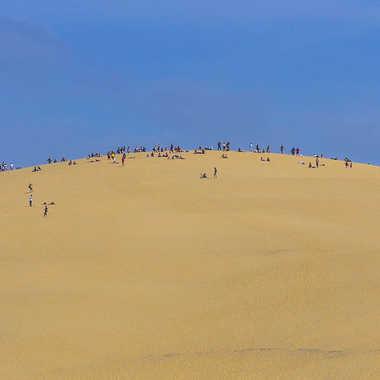 On joue au sable?.. par Micheldechelles