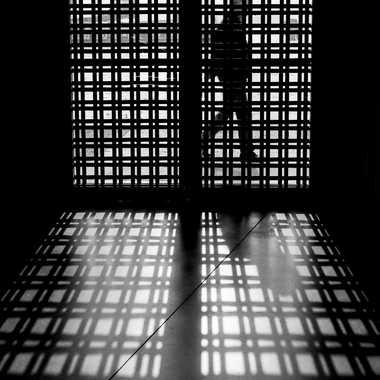 En cage? par Fillion