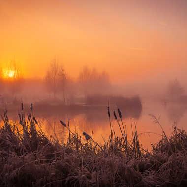 Paysage hivernal par pascalesquin
