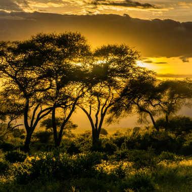 Coucher de soleil sur le Tarangyre par Galby