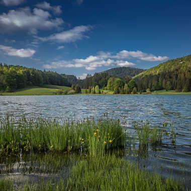 Au bord du lac par brj01