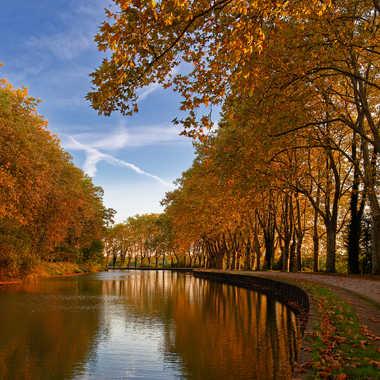 Les couleurs de l'automne sur le Canal du Midi par Fred31