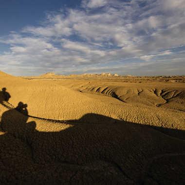 Minotaure du désert ?  par Colybri