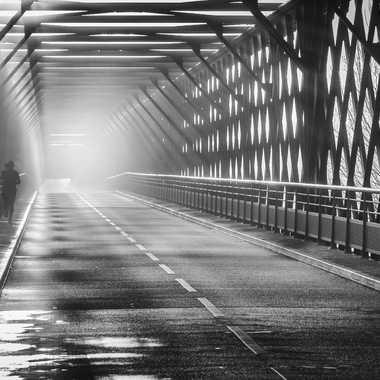 Pont de Thouaré sur Loire par dc16