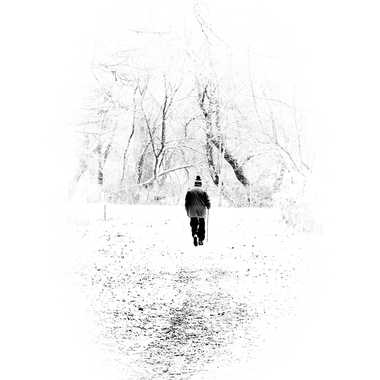 Blancheur neigeuse par Philipounien