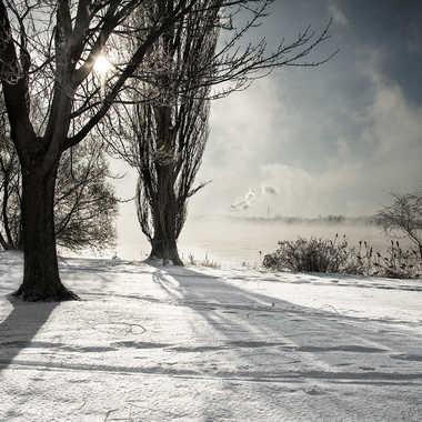 Neige et brume de mer en contre-jour par ChristianF