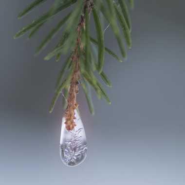 Une perle de glace par Guy07