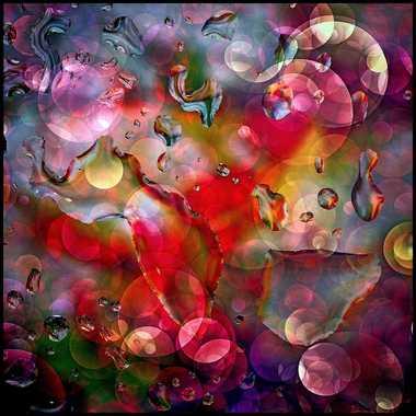 Abstraction par brightman
