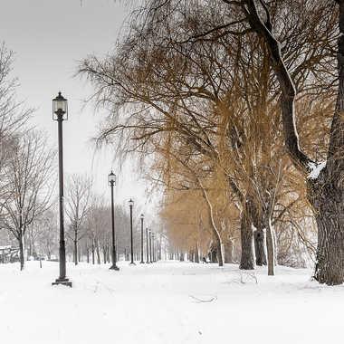 Promenade hivernale par ChristianF