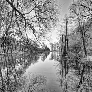 Ciselure hivernale ! par Fabiani