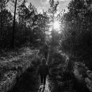 chemin vers le soleil par Dav.sv