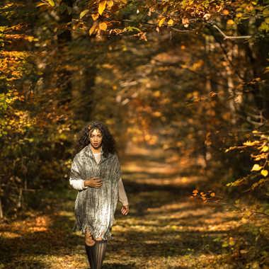 par une belle journée d'automne par Nimo