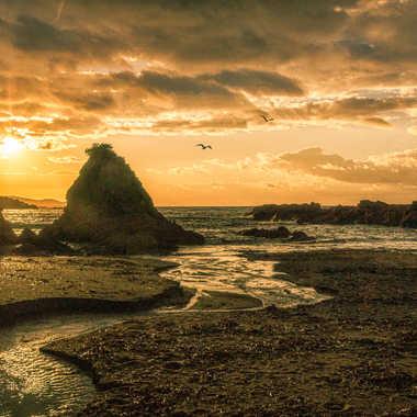 La plage du Rupionne par Jeanjean