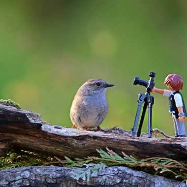 Coucou le photographe !! par PSEG