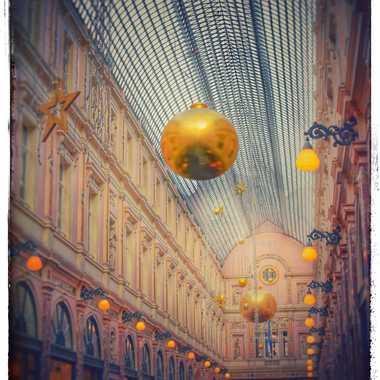 Galerie de la Reine par Paul Jans