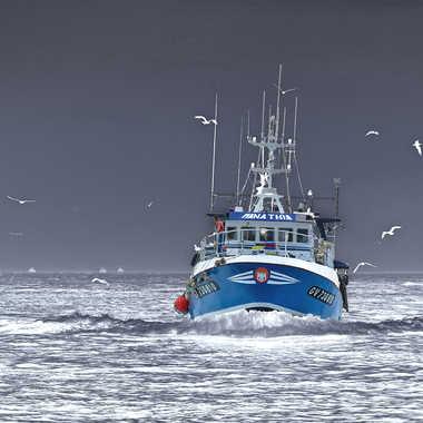 Rentrée de pêche.. par Micheldechelles
