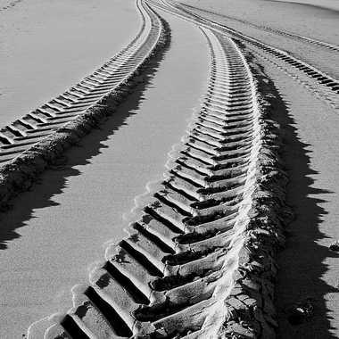Sculptures des sables par Patrick32