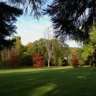 que le parc était beau en 2010 par LABADIE