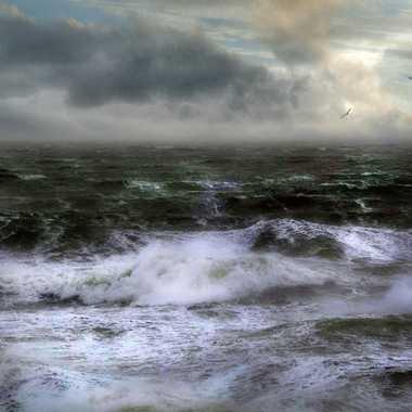 Storm par Toussia