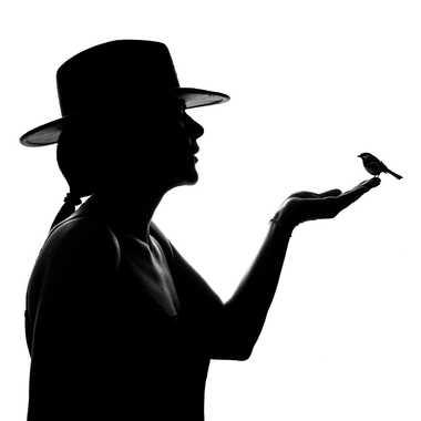 Comme un oiseau sur la main par Christophe_c