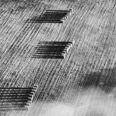 Ombres champêtres par sylmorg