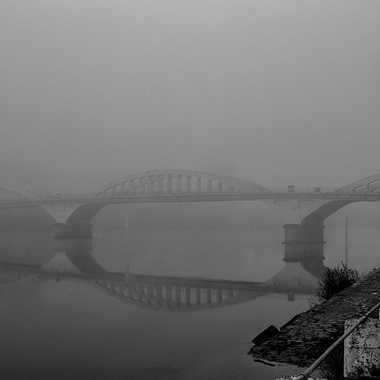 Automne brumeux sur la Saône par patrick69220