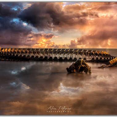 Le serpent de l'océan par lgdq74