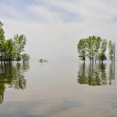 Champs Inondés par ChristianF