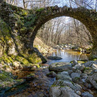 Petit pont perdu par Dan-du-Tan