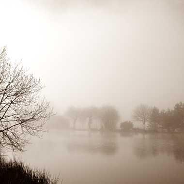 Peinture matinale dans la brume par mamichat