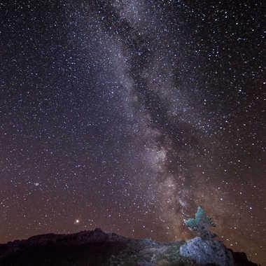 Pousser sous les étoiles par Dav.sv