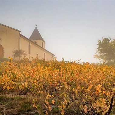 Chapelle Saint Roch par patrick69220