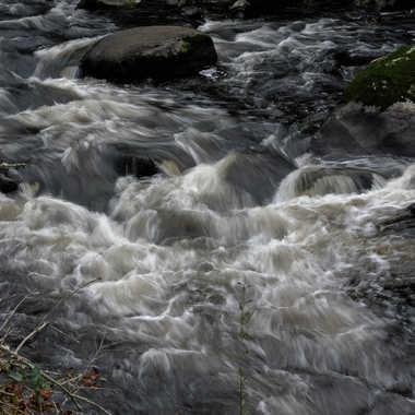 Aucour de l'eau par Mullerpatrick_photographie