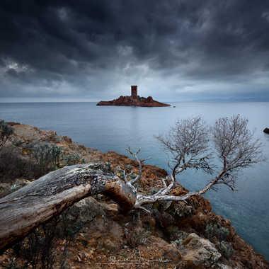 Les heures sombres de l'ile d'or par Guizzo