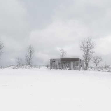 La cabane de mes rêves. par FloRd